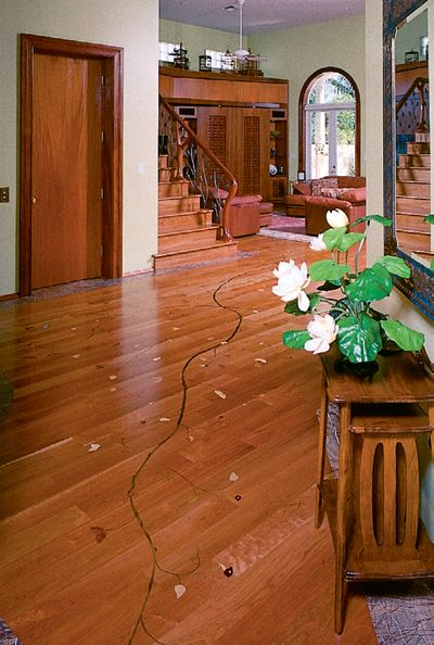 13 Best Nwfa Floor Of The Year Winners Images On Pinterest Wood