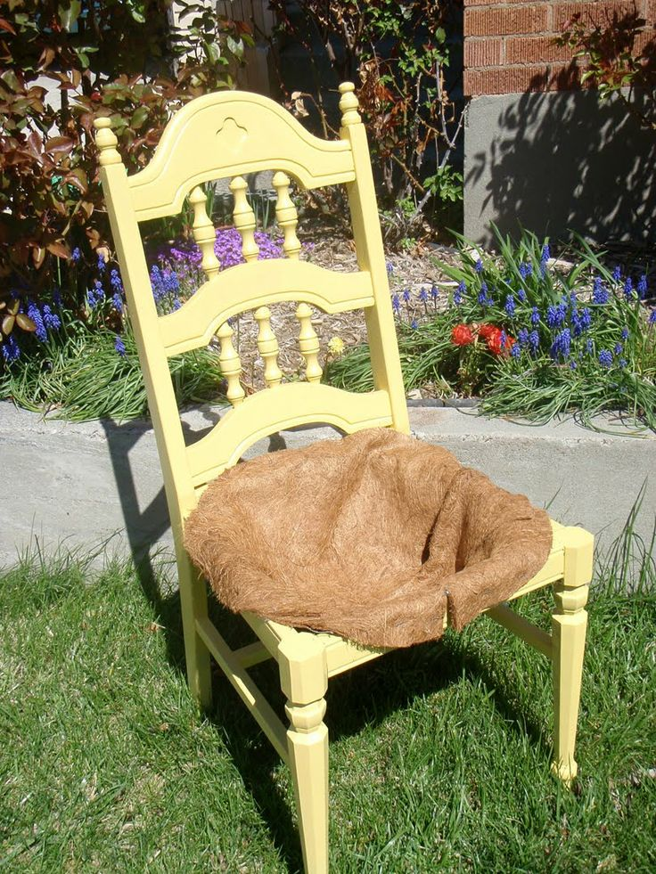 379 besten st hle bepflanzen dekorieren bilder auf pinterest alte st hle g rtnern und balkon. Black Bedroom Furniture Sets. Home Design Ideas