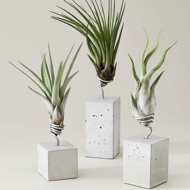die besten 25 pflanzenhalter ideen auf pinterest pflanzenschaukel pflanzenhalter diy und diy. Black Bedroom Furniture Sets. Home Design Ideas