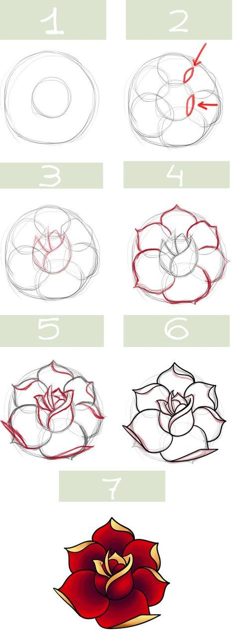 Traditional rose drawing step-by-step instruction chart.