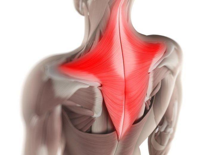 Мышечные зажимы шеи и спины: снятие боли изменением позы     Наиболее частой причиной болей в шее и спине являются хронически напряж...