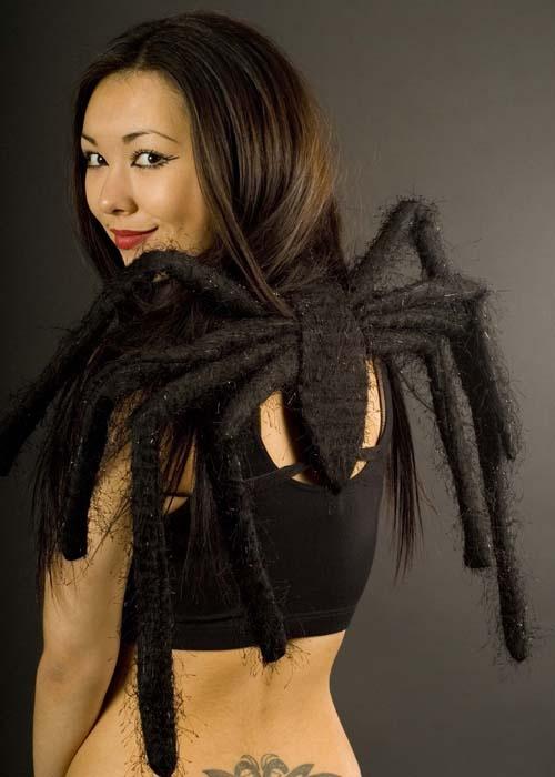 Halloween Fancy Dress Black Spider Legs Wings