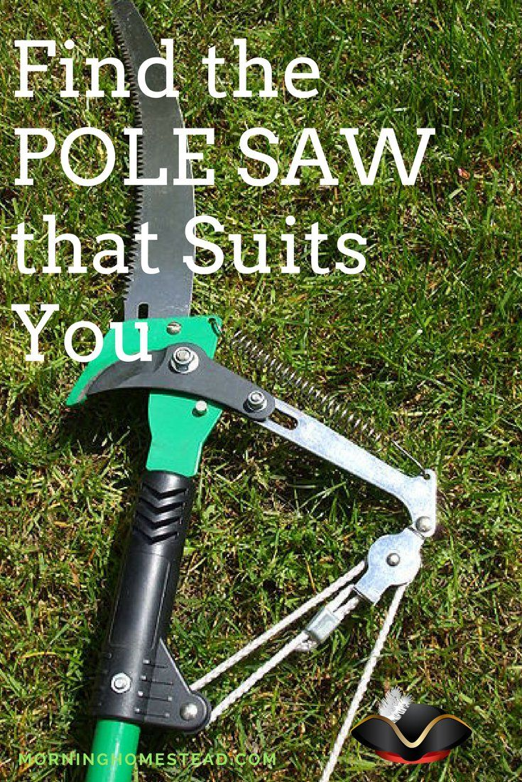 Best Battery Powered Pole Saw For The Money Reviews Guide 2019