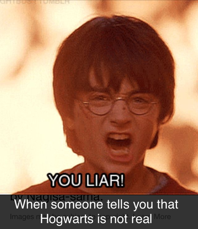 Look Guys I Made A Harry Potter Meme Harry Potter Quiz Harry Potter Funny Harry Potter Book Quotes