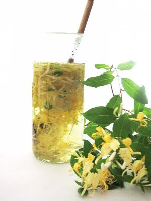 Wild Honeysuckle tea: steep flowers for 3-5 minutes, strain. Sweeten if desired. Taken hot, this is a wonderful sore throat/cough/cold relief. Syrup: 2 c fresh honeysuckle blossoms (leaves too, but no berries, they are toxic) - 4 c water - 1 c honey. On high heat bring water to a boil and stir in honeysuckle and reduce heat, simmering for 10 mins, strain. Return to pot and stir in honey. Store in the refrigerator for 1 month. Good for treating bacterial infections and urinary tract…