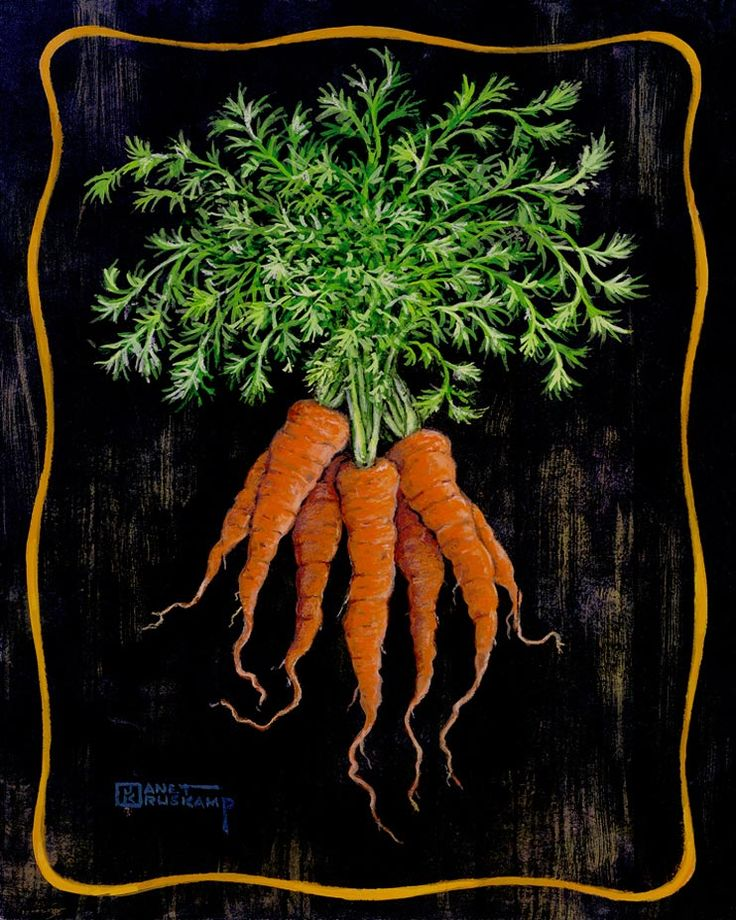 They always said that carrots were good for your eyes, now I know what they meant. Bright orange and the perfect shade of green make these c...