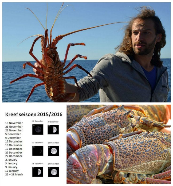 Crayfish season is upon us. Permits can be obtained at the Post Office.