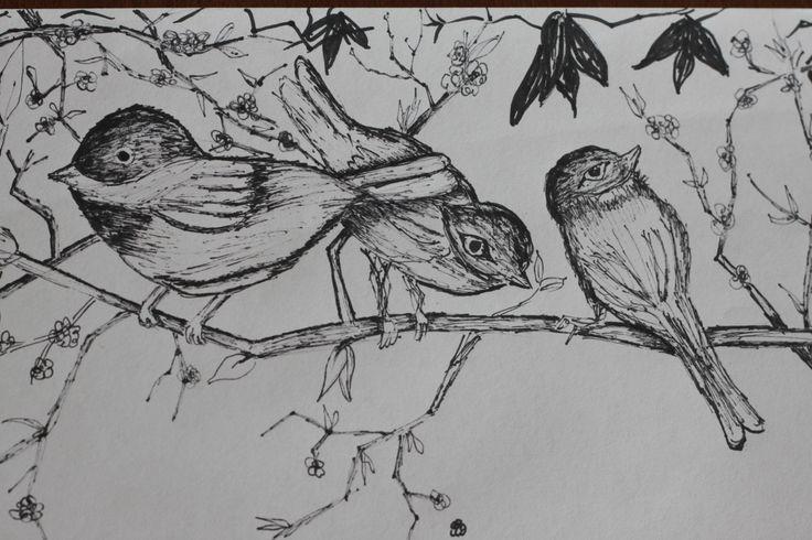 Birds On The Tree Branch Birds On Tree Branch Practice