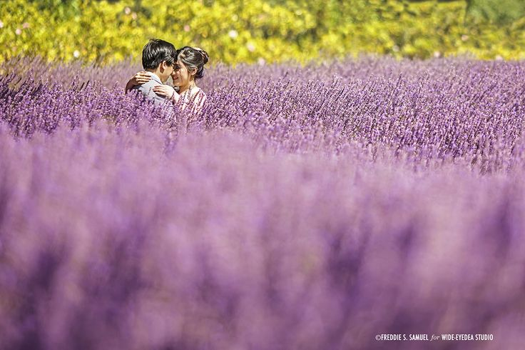 Prewedding Engagement Photography - Lavender Farm Make up and Hair Do by Keziah Shierly Make-up Artist