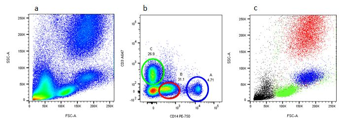 Backgating to identify leukocyte subsets. (a) Red cell lysed whole blood was stained with CD3 (MCA463A647) and CD14 (MCA1568P750) (b). Cells in gates A, B and C were backgated onto FSC vs SSC (c) to identify specific leukocyte populations.