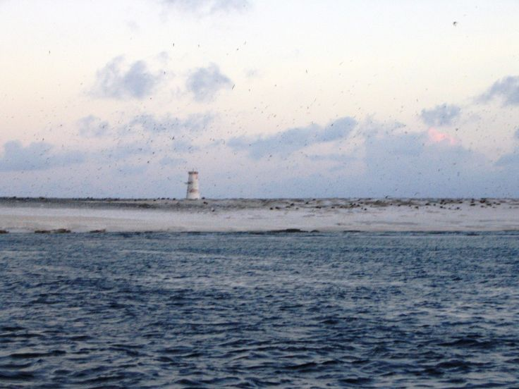 Jarvis Island coast line with light/day beacon showing.