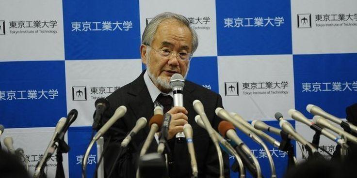 El científico japonés Yoshinori Ohsumi, de 71 años, ha sido galardonado este lunes con el Premio Nobel por su estudio de la autofagia, un proceso de reciclaje metabólico en
