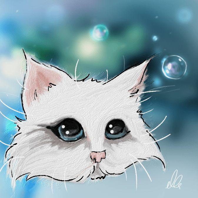cute kitten illustration katze