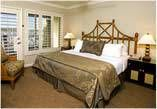 San Diego Hotel – Best Western Plus Island Palms Hotel #hotels #in #bristol http://hotel.remmont.com/san-diego-hotel-best-western-plus-island-palms-hotel-hotels-in-bristol/  #motel san diego # San Diego Hotel – Friendly, Full-Service Resort You re in for a real treat when you choose the Best Western Plus Island Palms Hotel & Marina. Located on Shelter Island, San Diego s Hawaiian isle, our waterfront resort hotel delivers a relaxing, peaceful experience for leisure and business travelers…