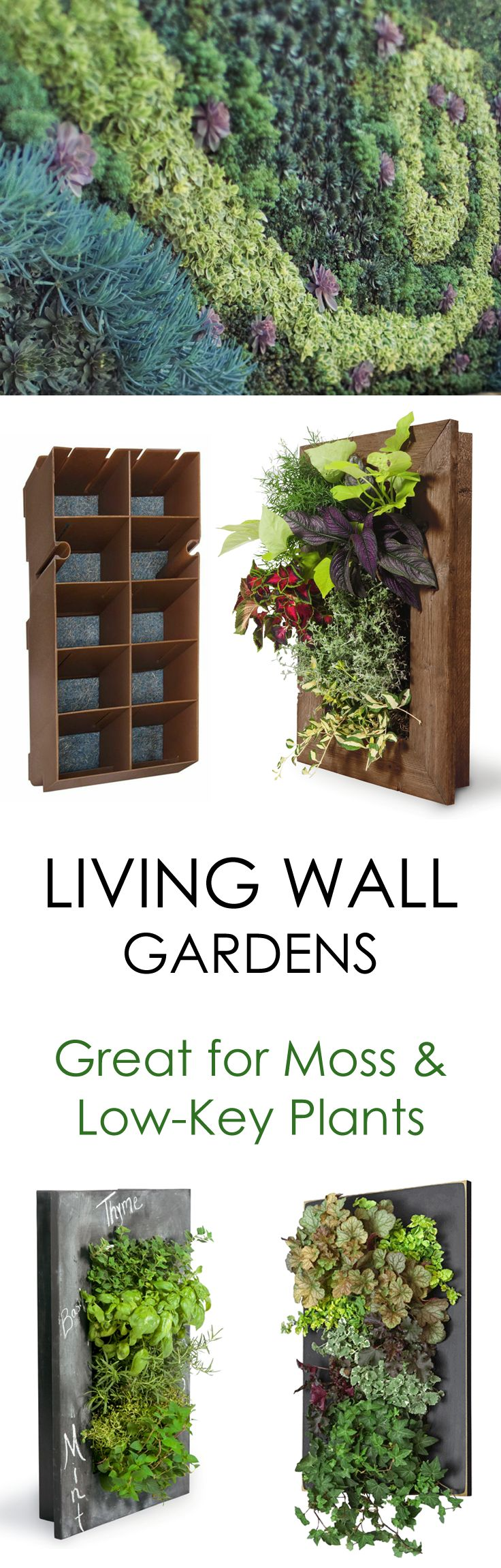 Create a lush moss garden with Urbilis' living wall planters! For extra dimension, accent your moss installation with ivy or ferns!