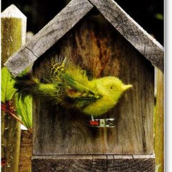 Free Needle Felting Projects | How to needle felt a bird ornament from the new book Felted Feathered ...