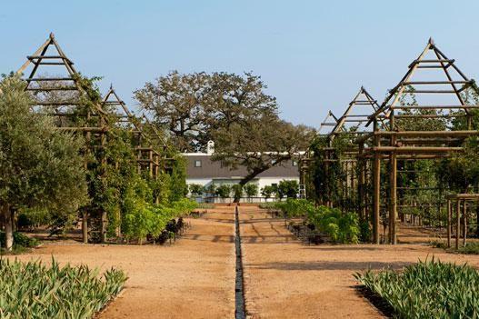 Posh Agritourism-Babylonstoren- Thinking Outside the Boxwood