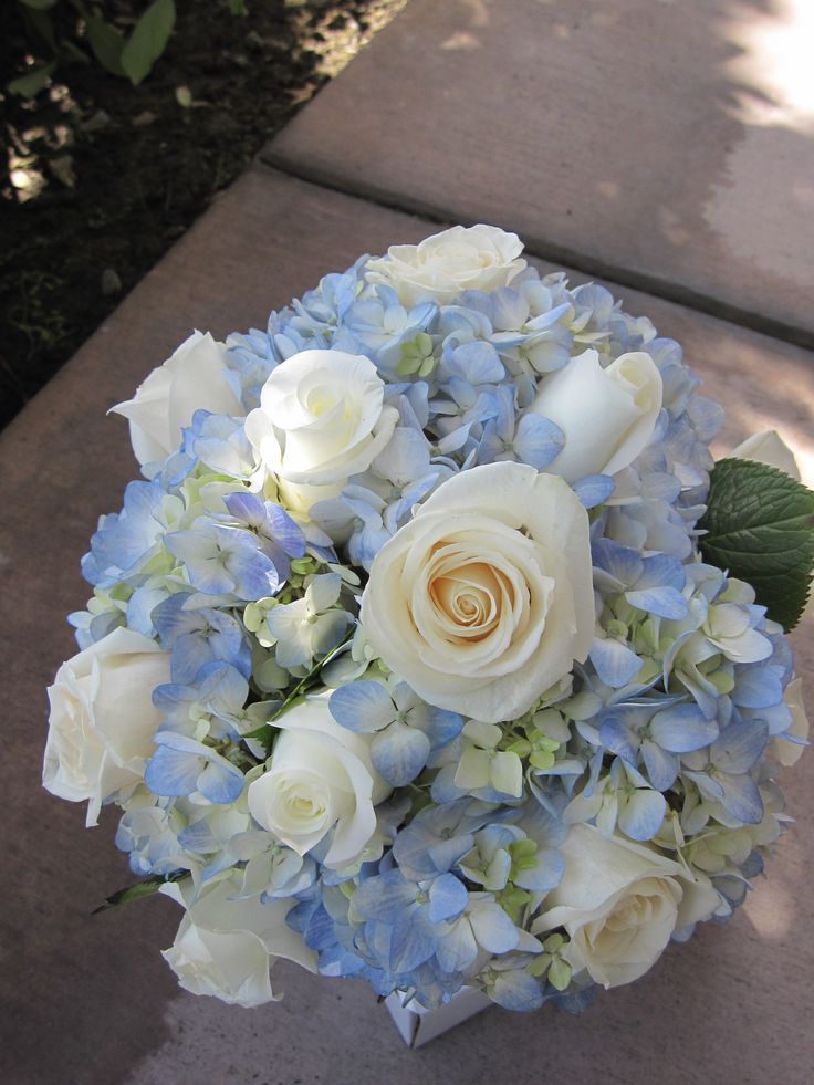 Bridal Bouquet Blue Hydrangeas With White And Ivory Roses