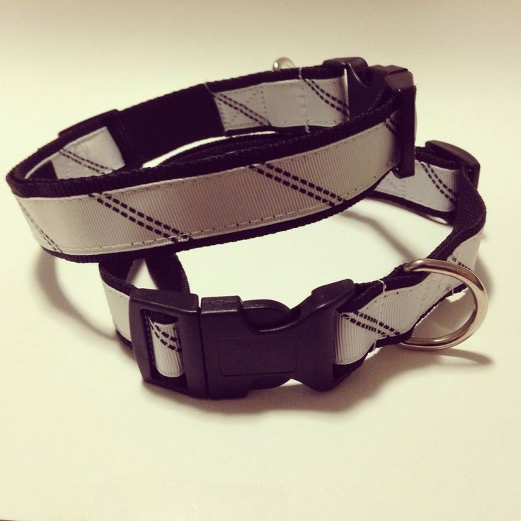 Go Go Dog Collar