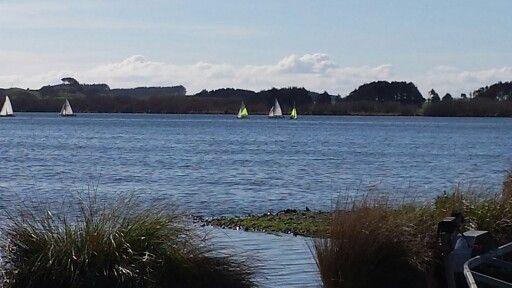10 yachts, and 2 kayaks on lake horowhenua. Stunnng!