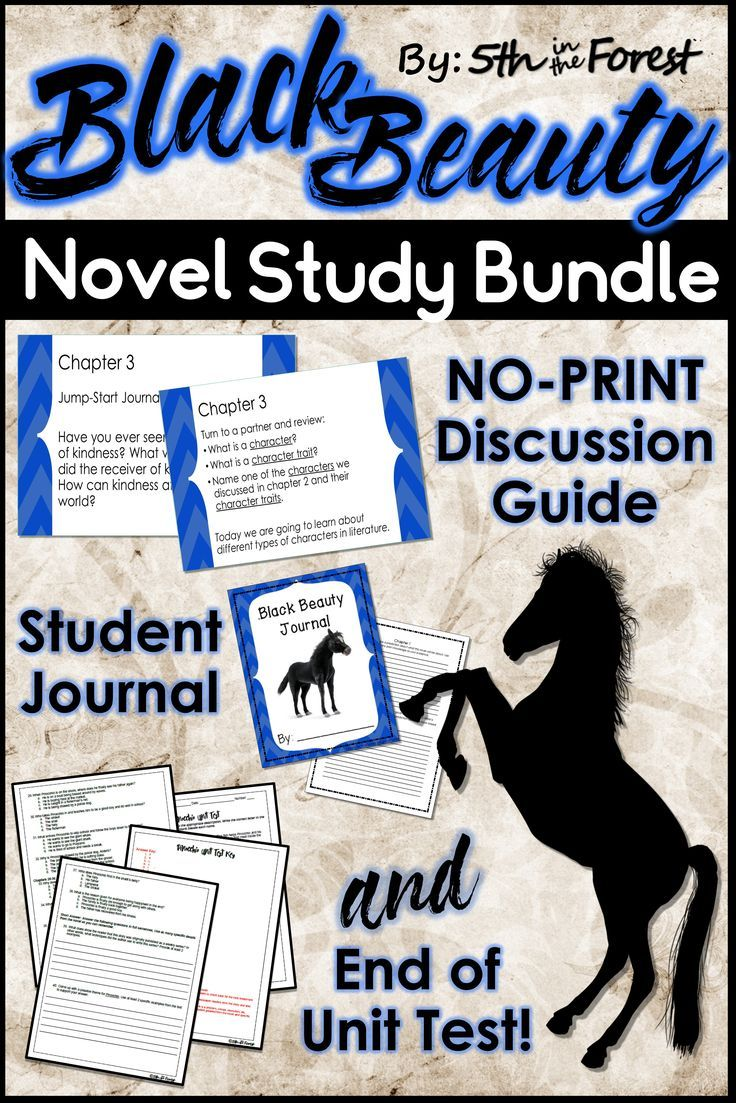 Engage your students with Anna Sewell's Black Beauty! This unit provides a no-print discussion guide, student journal, AND unit test. Students will practice point of view, cause and effect, summarizing, characterization, imagery, compare/contrast, sequence of events, setting, theme, figurative language, inference, and prediction. Easy to follow and NO PREP!!