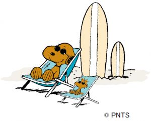SURF'S UP PEANUTS