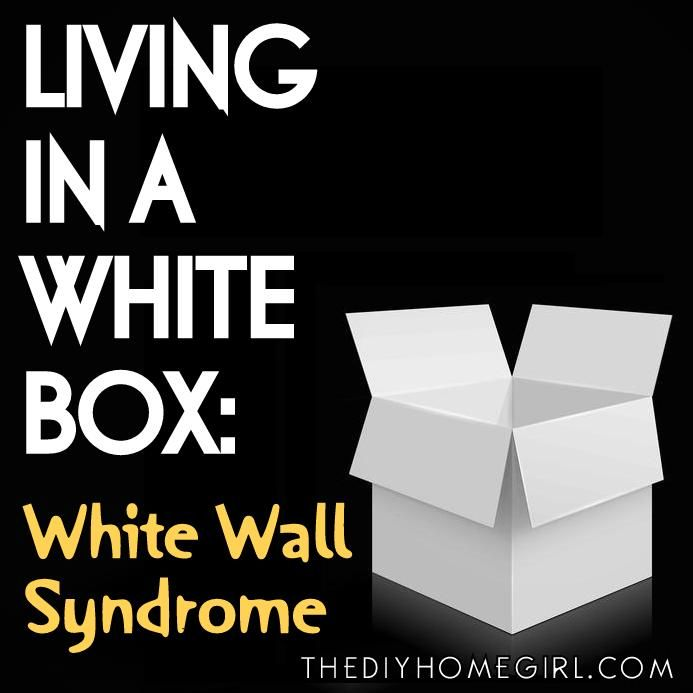 Introducing a new series on how to decorate a rented home: Living in a White Box. First up, tips for combating White Wall Syndrome.