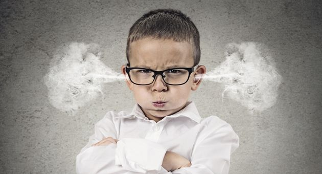 Dummy Spit - Haven Magazine: This article discusses the experience of anger in childhood and provides some tips from the MASTER Institute in supporting young children with self-calming.