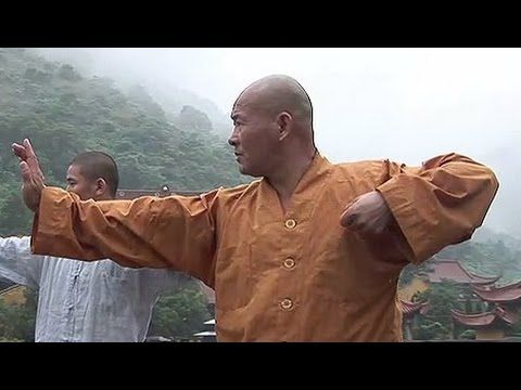 28 best Tai Chi images on Pinterest instructor  monk Yanxiang  from Shaolin temple ba duan jin is an external  form of Shaolin internal kung fu  which develops the relation between body  and