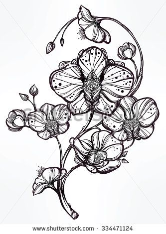 Vintage floral highly detailed hand drawn orchid flower stem with buds and petals. Beautiful motif, tattoo design element. Book concept art. Isolated vector illustration in line style.