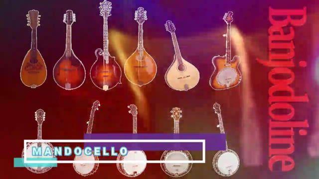 Banjodoline is a Virtual Banjo and Mandolin Audio Unit, VST