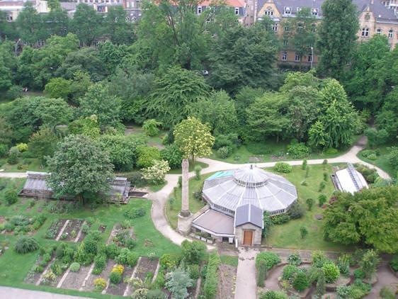 Fabuleux Mejores 77 imágenes de Botanical Garden -Jardines Botanicos - Le  KF31