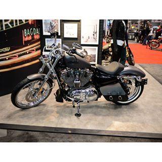 #winstonrodneyphotography #pro#harleydavidson #motorcycleshows