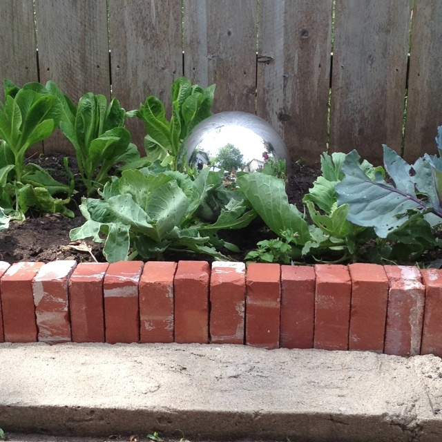 Best 25 brick garden edging ideas on pinterest garden for Brick garden edging ideas