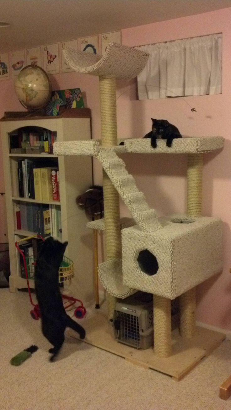 17 best ideas about homemade cat beds on pinterest for Homemade cat tower