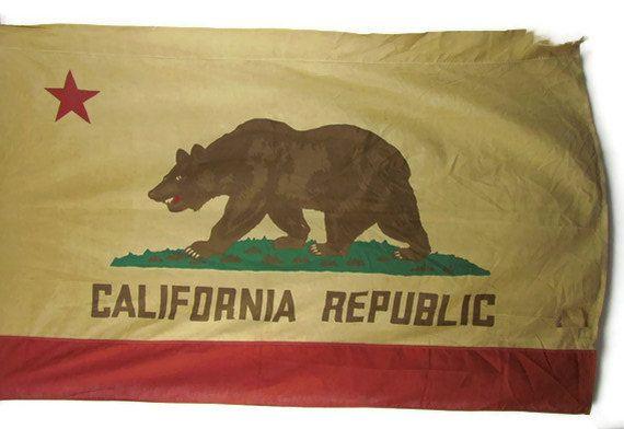 A seasoned California state flag.: Thalia Surfing, States Flags, U.S. States, Random Awesome, Seasons California, California States