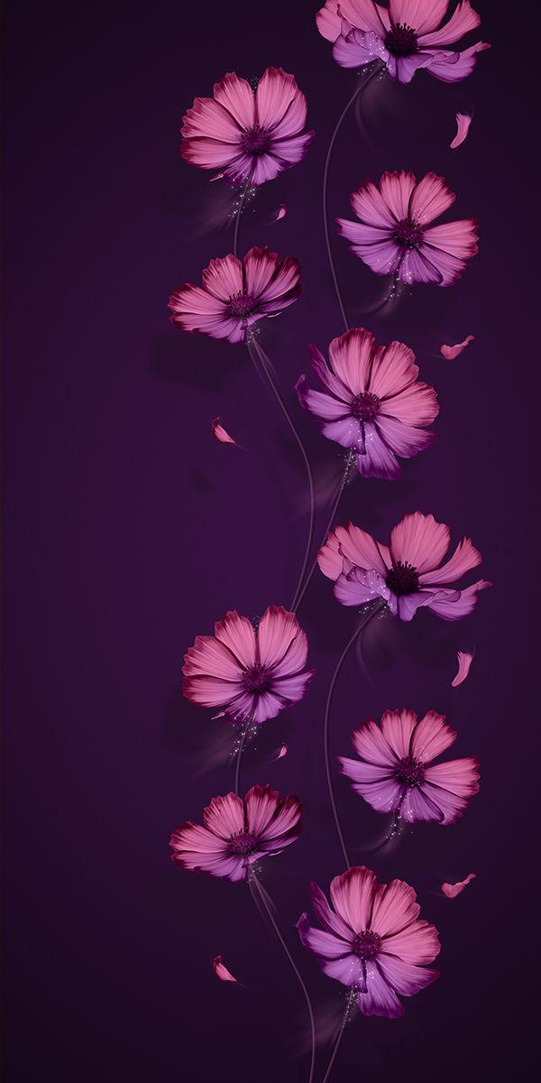 Lg Hausys On Behance Flower Iphone Wallpaper Flower Background Wallpaper Beautiful Flowers Wallpapers