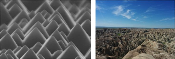 New blog post! Nature Under a Microscope: Exploring the Beauty of Nanoscience (L photo credit @UNSWEngineering)