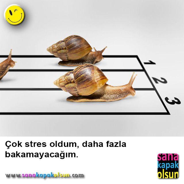 Stresli olmayın haftasonu geldi :)  #sanakapakolsun www.sanakapakolsun.com