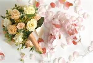 Do you think that color's bouquet right for this background? 로얄카지노⇔Ø HBN122 COM ⇔Ø 로얄카지노 로얄카지노 로얄카지노 로얄카지노 로얄카지노 로얄카지노 로얄카지노 로얄카지노 로얄카지노 로얄카지노 로얄카지노 로얄카지노 로얄카지노