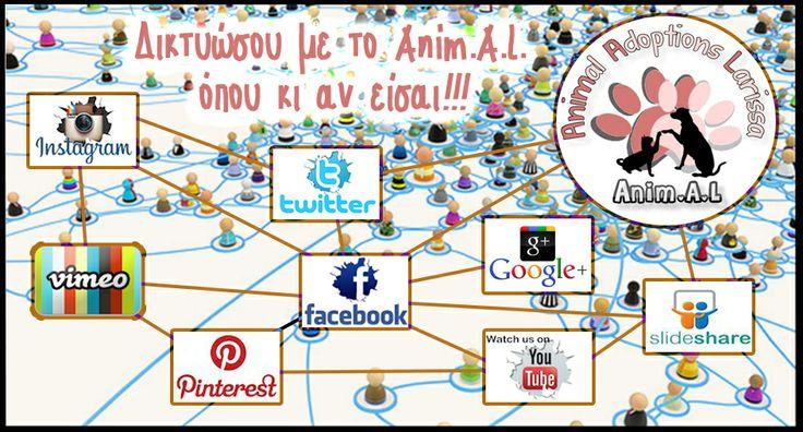 Tο Anim.A.L. μεγαλώνει, προσθέτει νέες δεξαμενές πληροφόρησης στα περισσότερα social networks και αυτό δείχνει το πόσο πολύ αγαπάμε να μένουμε σε επαφή μαζί σας από όπου και αν μας το ζητήσατε. Σας ευχαριστούμε όλους πάρα πολύ για την επιλογή και τη στήριξη σας, οι δίποδοι και οι τετράποδοι του Anim.A.L. ♥