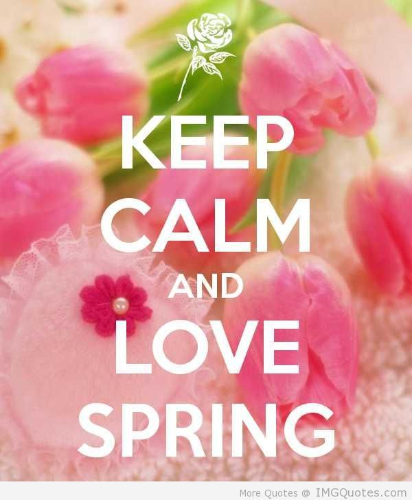134 Best I Love That Junk Images On Pinterest: 134 Best Images About Keep Calm..... On Pinterest