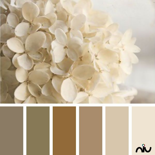 80 best white cream taupe my favs images on for Creamy neutral paint colors