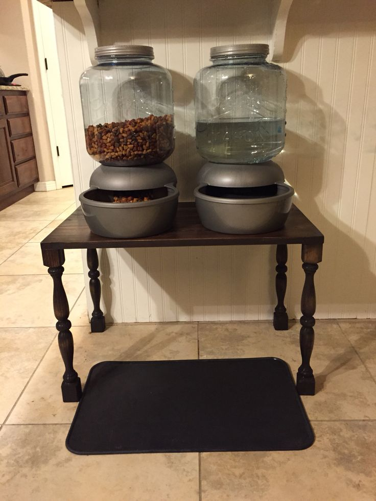 Mason jar inspired pet feeders with our diy elevated table for the Great Dane! Love it :)