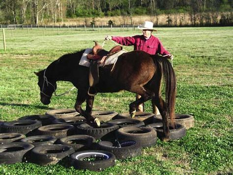 Build horse's courage using tires as obstacle on confidence course. Develops horse's trust in his rider leader.