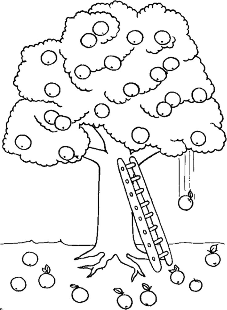 Apple Tree And Ladder Coloring Page