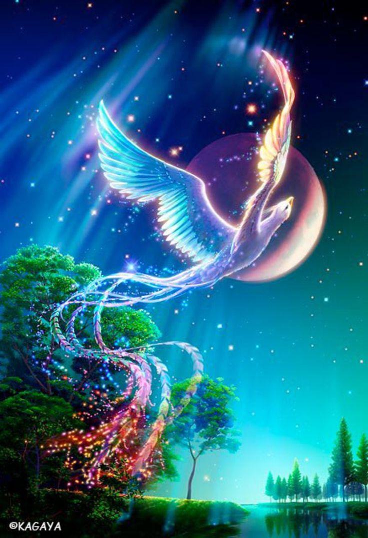 fond pour mon weblog marquise des anges web page 1