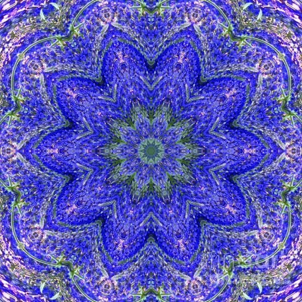 kaleidoscope - fineartamerica.com