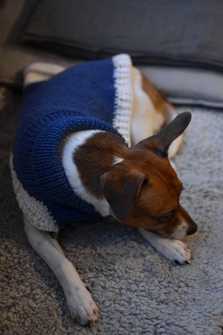Stickat hundtäcke med virkad kant ~ Diagnos:Kreativ