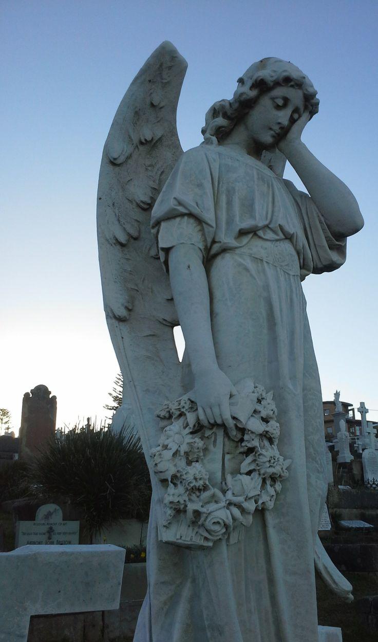 Angel looking over Millie